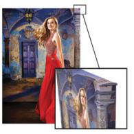 Gallery Wrap 24x36